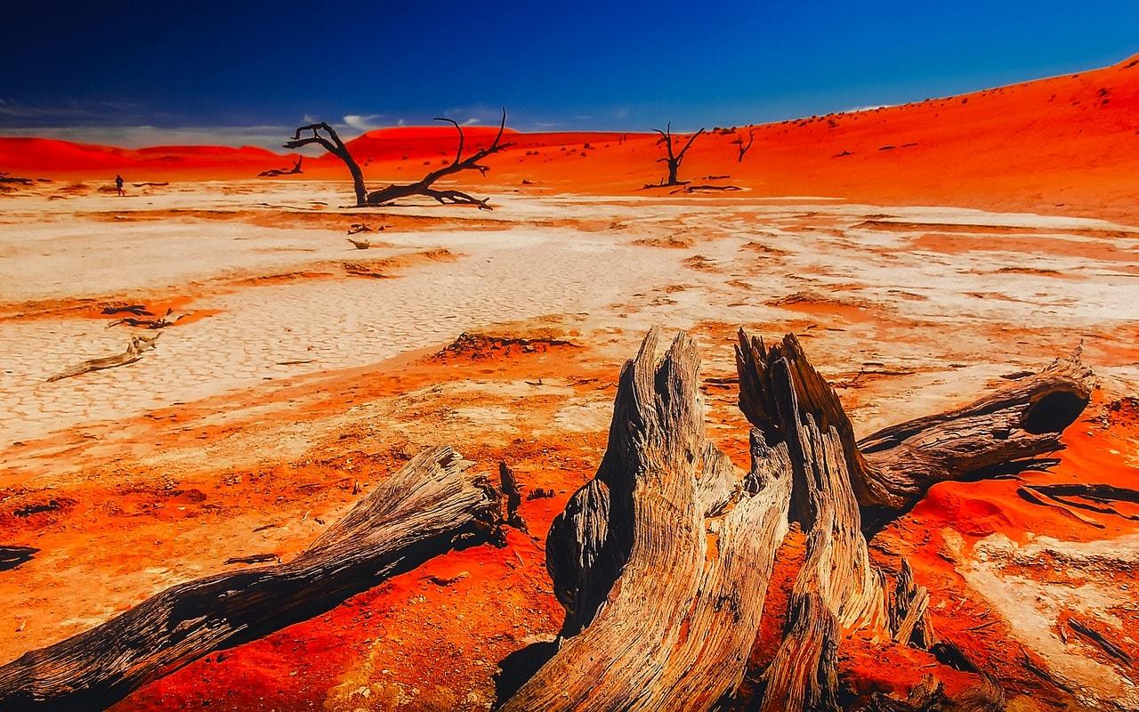 namibia-tpsdave; pixabay.com; Creative Commons CC0