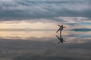 Spiegelung im Wasser. (Foto: Ashim d Silva, Unsplash.com)