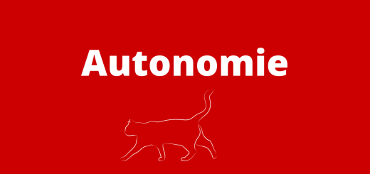 Pierre Clastres –Archäologie der Gewalt Teil 8 Autonomie und Konservatismus. (Illustration: Neue Debatte)
