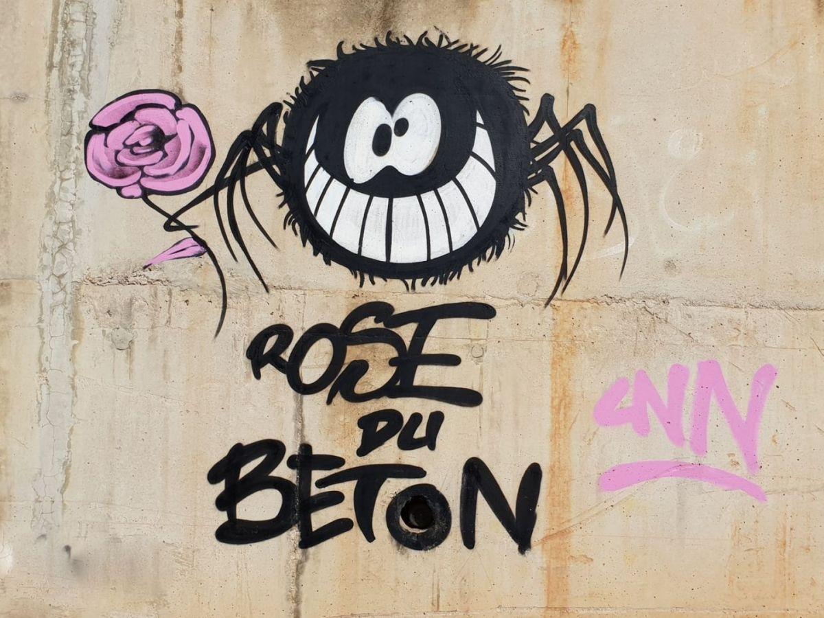 Dem Exitus in den Städten durch Rose statt Beton begegnen. (Foto: Karim Manjra, Unsplash.com)