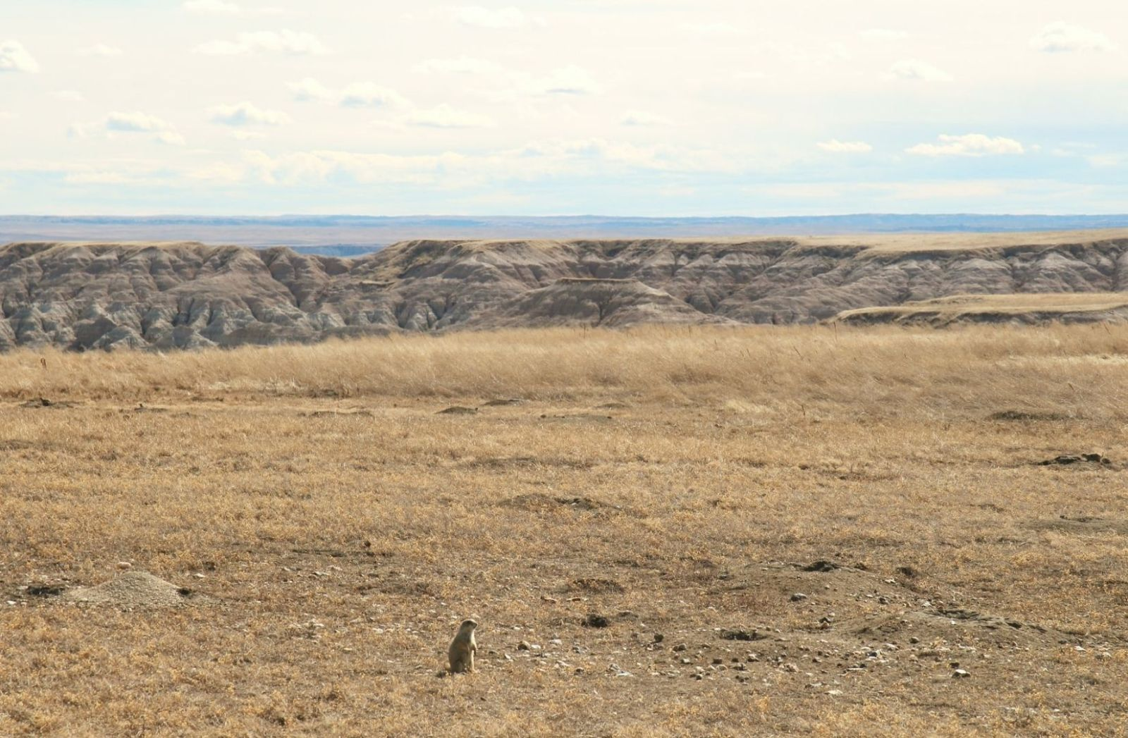 Armut herrscht im Reservat in South Dakota. (Foto: Sophia Simoes, Unsplash.com)