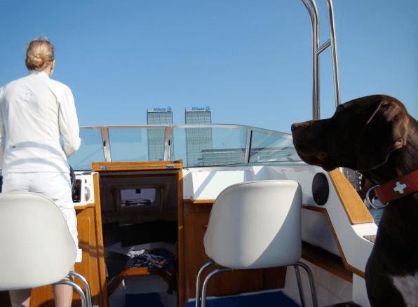 Spreeausflug im Elektroboot