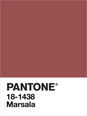 Marsala, color of the year 2015