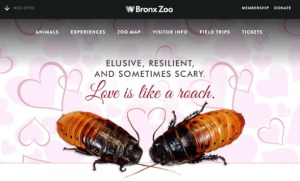 Bronx Zoo Valentine's Tag Promotion.