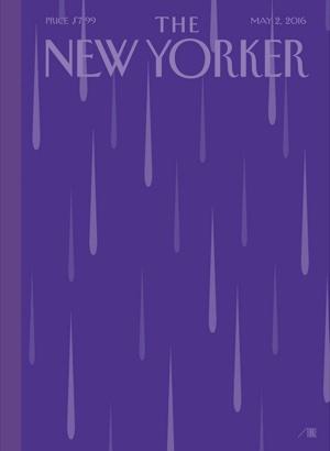Purpurroter Regentitel beim New Yorker
