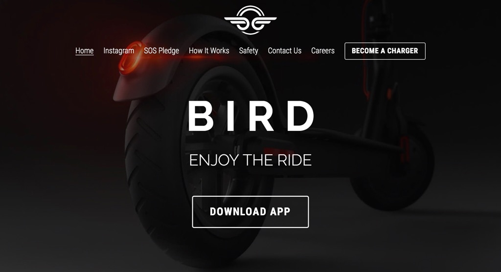Bird-2018