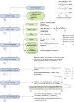 EEG Interpretation