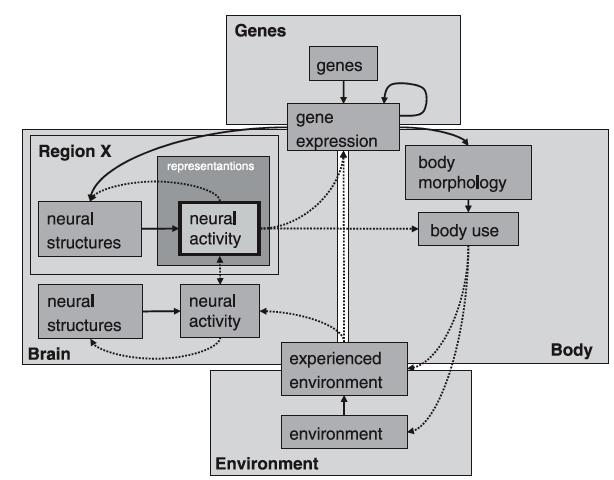 Figure 4 from Westermann et al. 2007