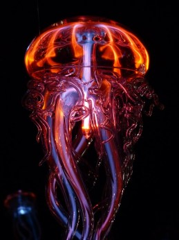 jellyfish-113386_640