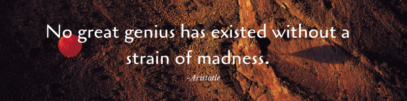 No great genius has existed without a strain of madness.