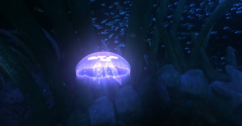 A jellyfish in the ocean.