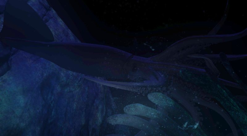 A squid in the ocean.