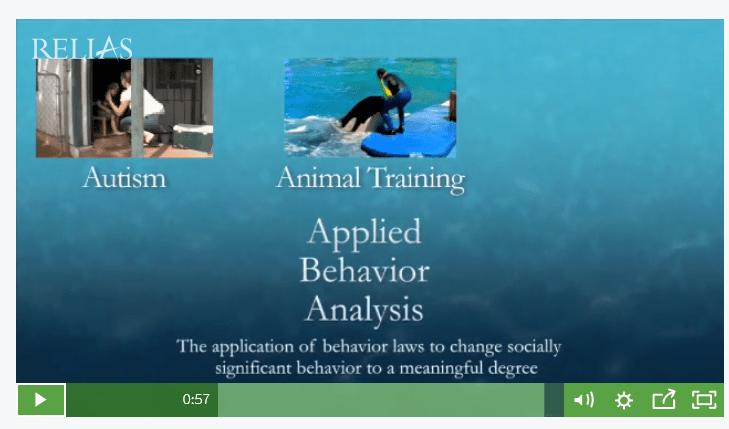 animaltraining.PNG