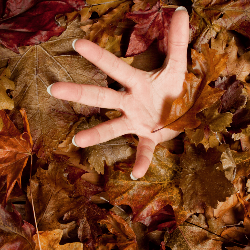 A hand reaching out of a bed of fall leaves. Image courtesy of Canva