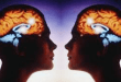 La Teoría de la Mente y las Neuronas Espejo