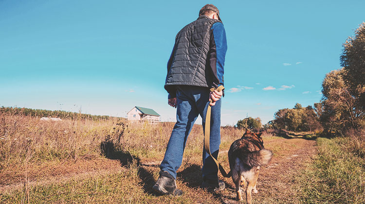 Man walking with dog on rural road