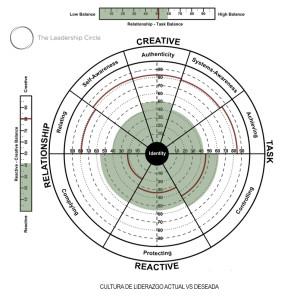 LCS_Leadership_circle_survey