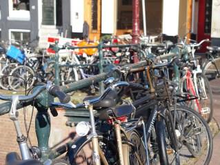 Bici parking