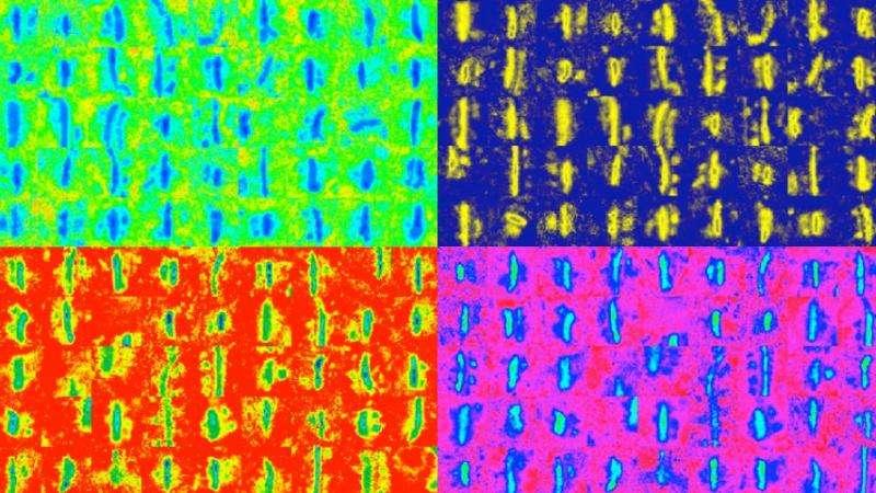Team develops new method for analyzing synaptic density