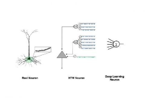 Numenta researchers discover how the brain learns sequences, a key to intelligent systems