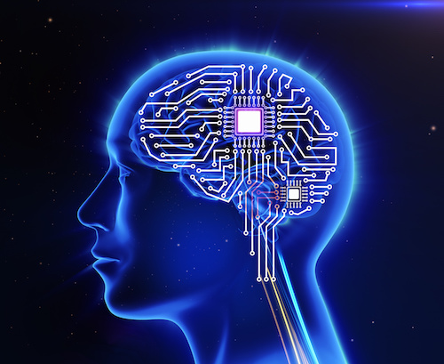 No, Your Brain Isn't a Three-Pound Meat Computer