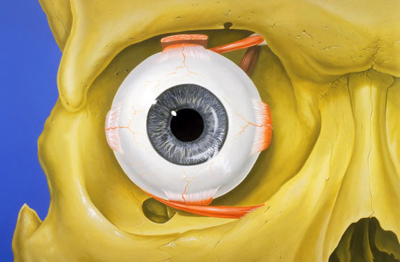 Researchers Discover New Type of Eye Movement