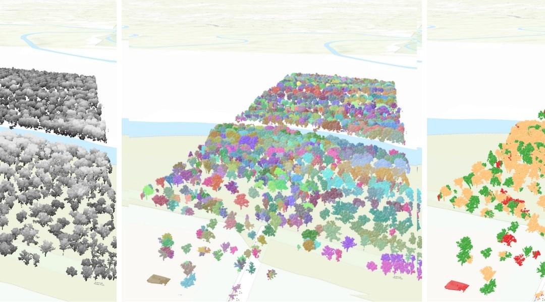 Hi-tech tree accounting: 3D models, LiDAR & machine learning (Part 1)