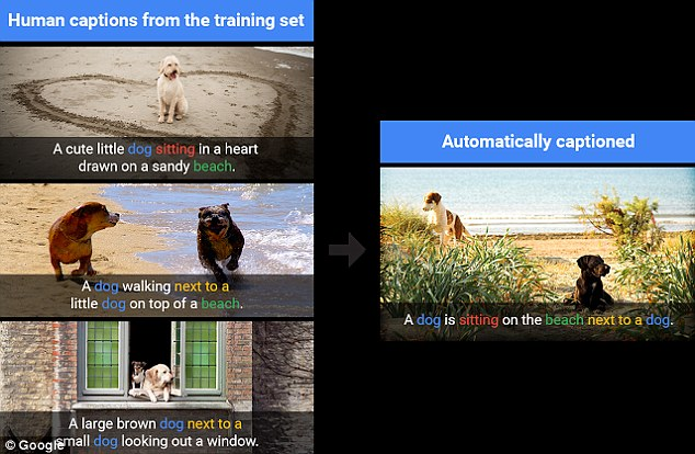 Google's 'Show and Tell' AI can tell you what's in a photo with nearly 94% accuracy