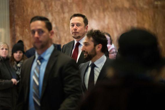 Elon Musk warns of AI's risks, calls for regulation now