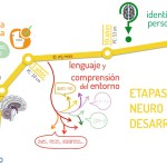 Etapas del neurodesarrollo