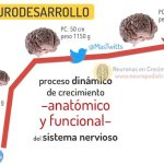 Hablemos de neurodesarrollo - #100NDES (2)