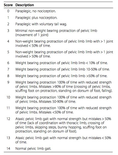olby-gait-scoring-chart