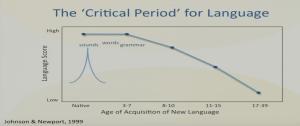 periodes-critiques-pour-apprendre-une-seconde-langue