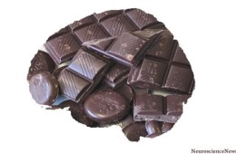 The image shows a brain made out of chocolate.