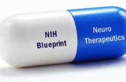 The image shows a pill with the NIH Blueprint tag printed on it.
