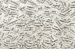 The image shows a collection of words.