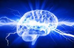 The image shows a blue brain.