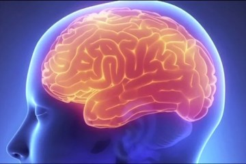 The image shows a glowing brain in a human head.