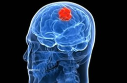 The image shows a an outline of a head with a red spot inside the brain representing brain cancer.