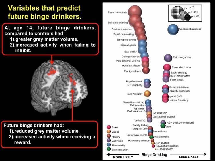 Study Identifies Predictors for Teen Binge Drinking