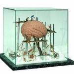 3B-Scientific-W23043-Showcase-Brain-12.6-Length-x-13-Width-x-15-Height-0