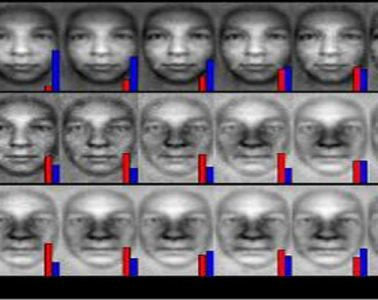 This image shows the computer generated faces mentioned in the press release.