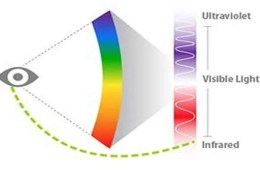 This image depicts the different wave lengths in the visual spectrum.
