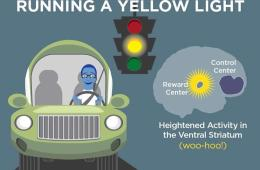 This cartoon shows a teen driving and a brain highlighting the areas activated.