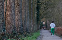 This image shows a man jogging on a country lane.