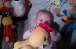 This image shows a gorgeous baby girl hugging her Chicca.