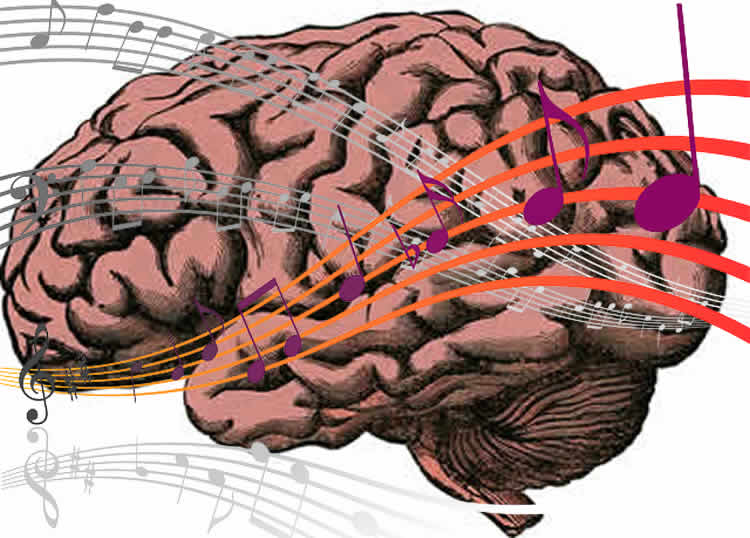 This shows a brain with music notes over the top of it.