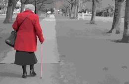 This image shows a old lady walking in a park.