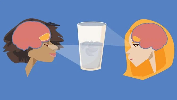 Drawing of two women looking at a glass of water. Their brains are exposed and OFC is highlighted.