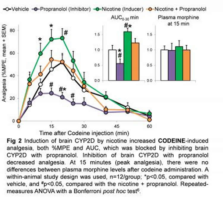 Graph showing how nicotine increases pain relief.